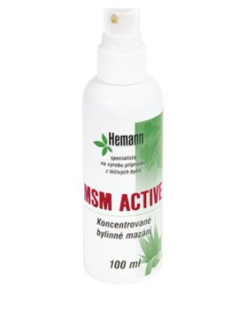 MSM ACTIVE 100 ml