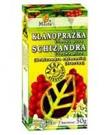 KLANOPRAŽKA (SCHIZANDRA) plod 50 g