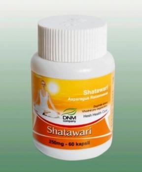 SHATAVARI 60 CPS shatawari, ajurvéda, estrogen, PMS, sex, reprodukční schopnost, reprodukce, omlazení, pro ženy