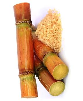 TŘTINOVÝ CUKR zlatý 1 kg třtinový cukr antioxidanty