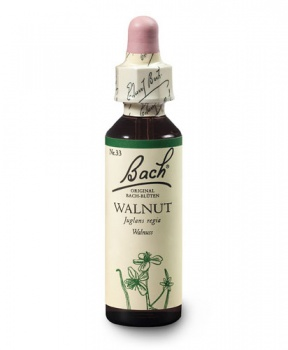 WALNUT - VLAŠSKÝ OŘECH 20ml