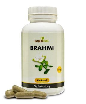 BRAHMI kapsle 100 tob. paměť,mozek,koncentrace,inteligence,iq,duchovní růst,myšlení,antioxidant