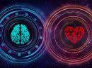 Hra INTUITION vision intuice,paměť,mozek,koncentrace,inteligence,iq,duchovní růst,myšlení,stolní hra
