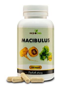 MACIBULUS 100 kapslí