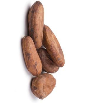 KAKAOVÉ BOBY BIO nepražené 100 g nepražené kakaové boby, hořčík, kakao, boby, raw
