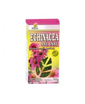 ECHINACEA NAŤ 50g echinacea nať čaj milota 50g